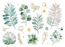 Textuur met greens, tak, bladeren, gele bloemen, gebladerte stock illustratie