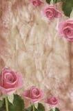Textuur met rozen Stock Afbeeldingen