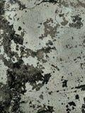 textuur in natuurlijk patroon, steenvloer Decoratief, grijs royalty-vrije stock fotografie