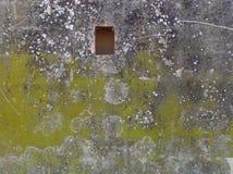 Textuur op de muur Stock Afbeelding