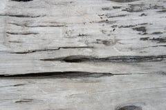 Textuur oud houten, houten achtergrondstijl uitstekend, houten patroon Royalty-vrije Stock Fotografie