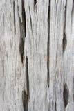 Textuur oud houten, houten achtergrondstijl uitstekend, houten patroon Royalty-vrije Stock Afbeelding