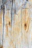 Textuur oud houten, houten achtergrondstijl uitstekend, houten patroon Royalty-vrije Stock Afbeeldingen