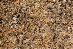 Textuur van aarde met shells en stenen stock foto