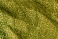 Textuur van Absract de groene leaher Stock Afbeeldingen