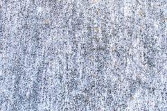 Textuur van bevlekt grijs beton met vlekken van korstmos Stock Foto's