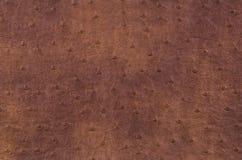 Textuur van bruin leer Royalty-vrije Stock Fotografie