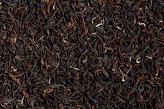Textuur van Darjeeling-thee stock foto