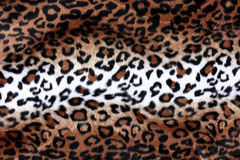 Textuur van de achtergrond van de luipaardhuid Royalty-vrije Stock Foto