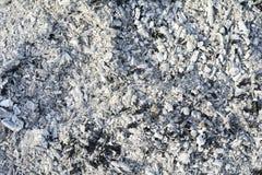 Textuur van de as Natuurlijke grijze achtergrond van gebrand hout Gebrande steenkolen stock afbeelding