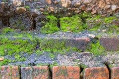 Textuur van de foto de Oude Bakstenen muur Royalty-vrije Stock Foto