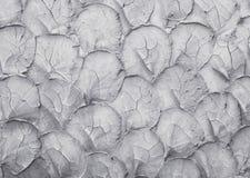 Textuur van de grijze muur van het kleurencement voor het achtergrond en ontwerpkunstwerk stock foto's