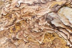 Textuur van de rots Royalty-vrije Stock Fotografie