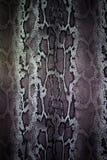 Textuur van de strepenslang van de drukstof Stock Afbeeldingen