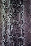 Textuur van de strepenslang van de drukstof voor achtergrond Royalty-vrije Stock Afbeelding