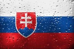 Textuur van de vlag van Slowakije Royalty-vrije Stock Afbeelding