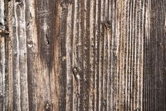 Textuur van donker hout Natuurlijke achtergrond Royalty-vrije Stock Foto's
