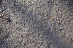 Textuur van donkere grijze oppervlakte van landweg stock foto's