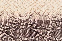 Textuur van echt leerclose-up, die onder de huid een reptiel, beige-bruine kleur, achtergrond in reliëf wordt gemaakt Stock Foto