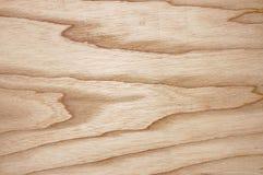 Textuur van een eik voor een achtergrond. stock foto