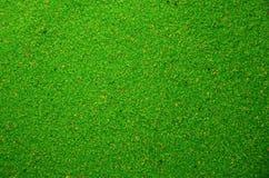 Textuur van een gekleurd korrelig zand dicht omhoog Groene korrels stock foto's