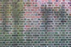Textuur van een oude die bakstenen muur gedeeltelijk in mos wordt behandeld royalty-vrije stock afbeelding