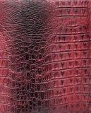 Textuur van een reptielhuid stock afbeeldingen