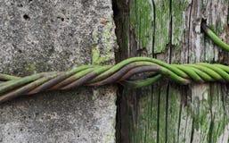 Textuur van een ruwe concrete die pijler met draad aan een houten oude gebarsten pijler wordt verpakt royalty-vrije stock fotografie