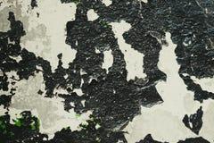 Textuur van een zwarte schaduw van gebarsten verf Stock Foto