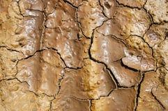 Textuur van gebarsten aarde Stock Fotografie