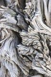 Textuur van gebrand hout, Rio Tinto royalty-vrije stock foto's