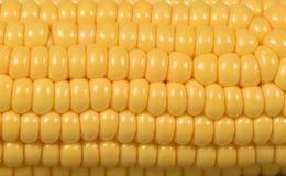 Textuur van gele zaden van rijpe en sappige melkmaïskolven stock foto