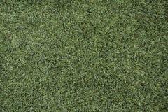 Textuur van groen gras De groene achtergrond van het voetbalgras stock fotografie