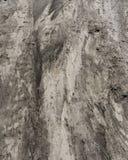 Textuur van grond van een gebied na zware regen stock foto