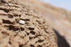 Textuur van grond in Rode warmwaterbronnen van badab-E Surt in noordelijk Iran Royalty-vrije Stock Afbeeldingen