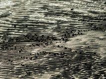 Textuur van het overzeese strand Royalty-vrije Stock Afbeeldingen