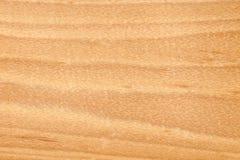 Textuur van hout Stock Fotografie