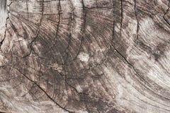 Textuur van houten gebruik als natuurlijke achtergrond Royalty-vrije Stock Foto