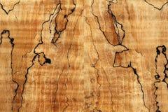 Textuur van houten oppervlakte Royalty-vrije Stock Afbeelding