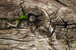 Textuur van houten raad Stock Afbeeldingen