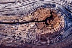 Textuur van houten stralen Royalty-vrije Stock Fotografie