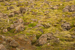 Textuur van Ijslandse bergen Stock Foto's