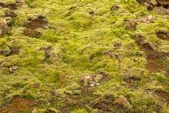 Textuur van Ijslandse bergen Stock Afbeeldingen