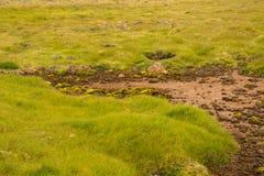 Textuur van Ijslandse bergen Royalty-vrije Stock Fotografie