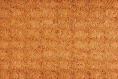 Textuur van koekjes dichtbij macro worden gebakken die royalty-vrije stock afbeeldingen