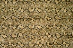 Textuur van kunstmatige snakeskin Stock Afbeeldingen