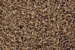 Textuur van metaal Royalty-vrije Stock Afbeelding