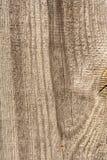 Textuur van oud droog doorstaan gebarsten hout, barsten langs de vezels van logboeken, close-up abstracte achtergrond royalty-vrije stock foto