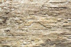 Textuur van oud hout Royalty-vrije Stock Foto's