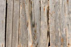 Textuur van oud hout Stock Foto